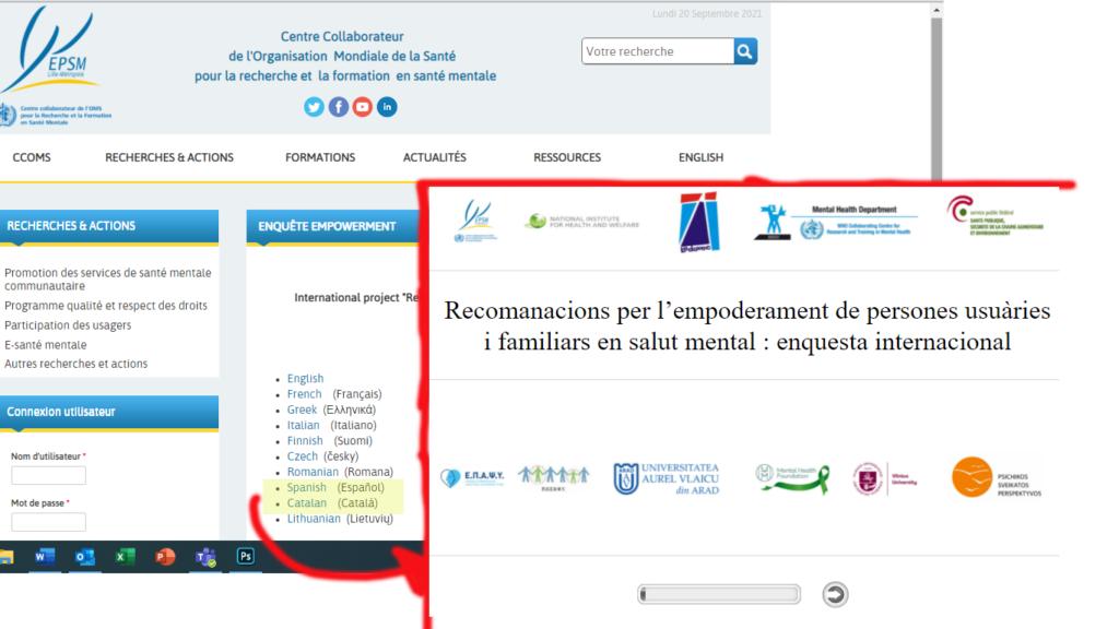 imatge de la web del formulari